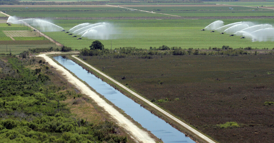 Everglades canal and irrigation